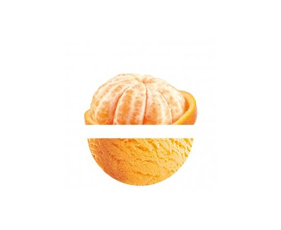 Sorbete Mandarina 5L