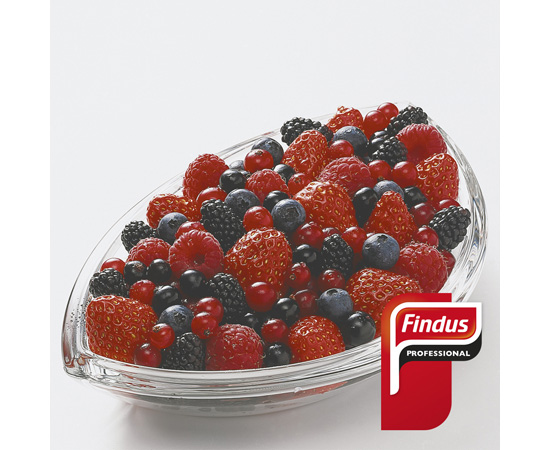 Topping Frutos Bosque Findus